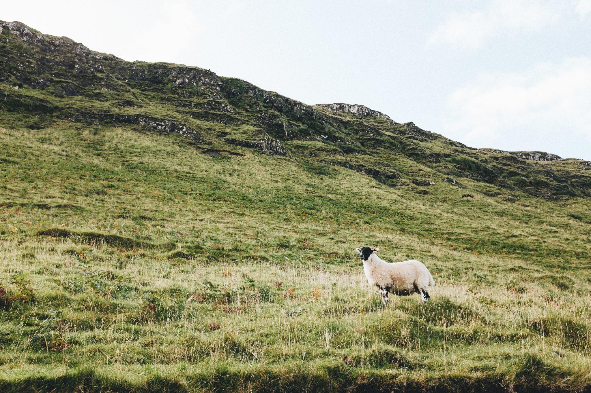Isle of Skye Talisker Beach