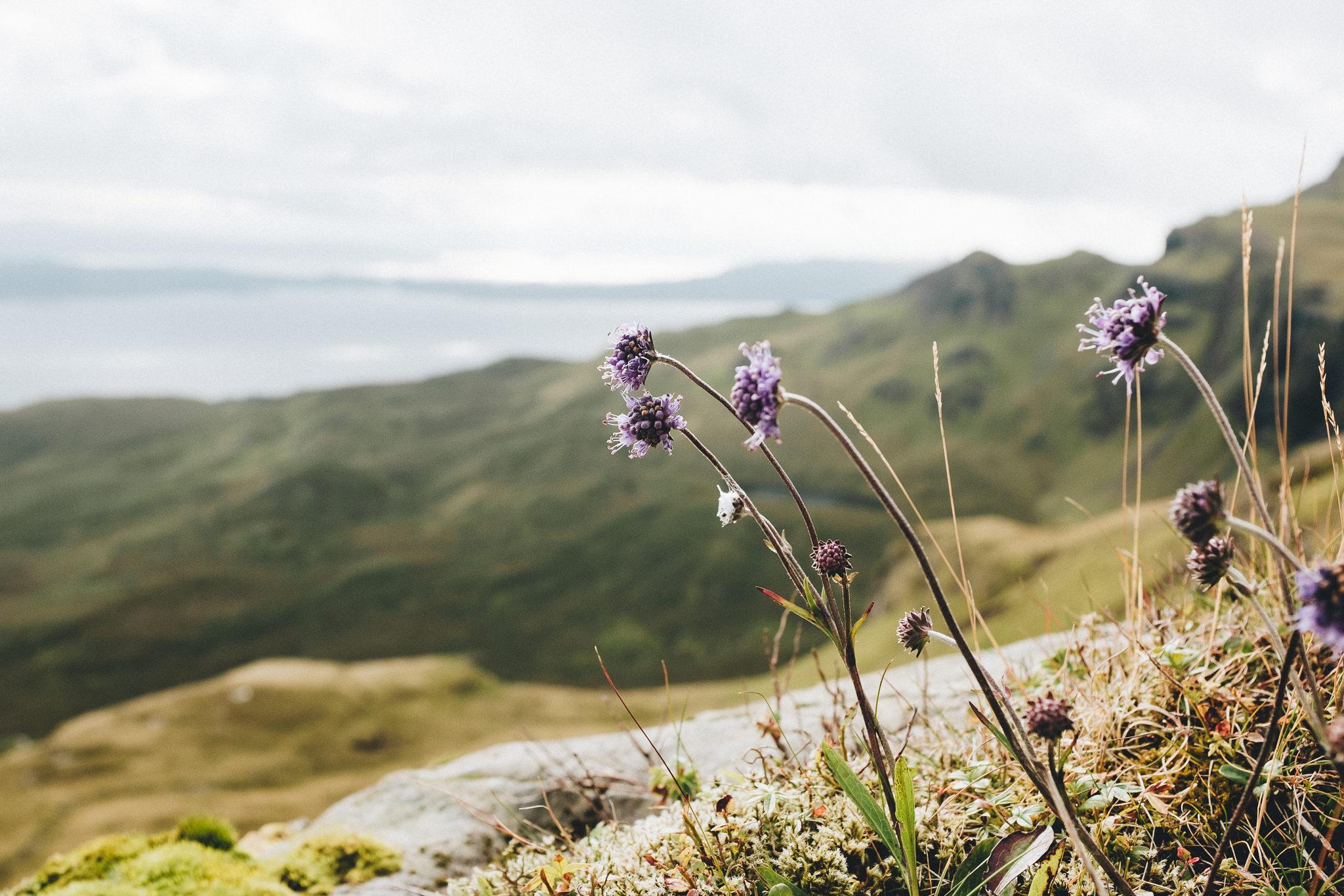 Isle of Skye The Storr